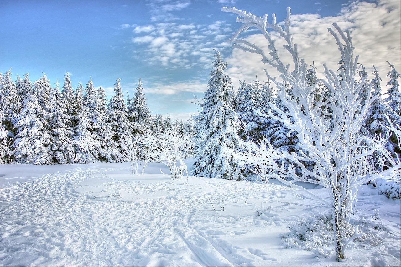 Dočkáme se brzy nového sněhu?